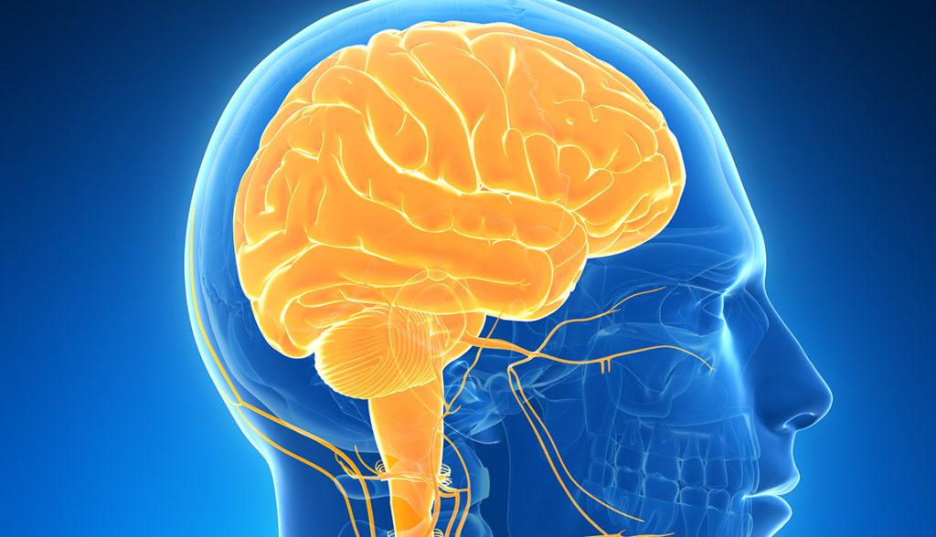 ¿Que és la sinestesia?
